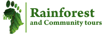 Rain forest uganda and community tours