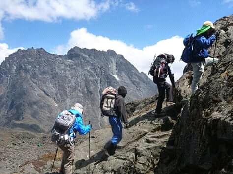 Rwnzori trekking